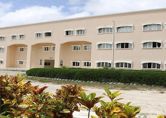 Mogadishu University and Open Learning Exchange Agree to Form Partnership