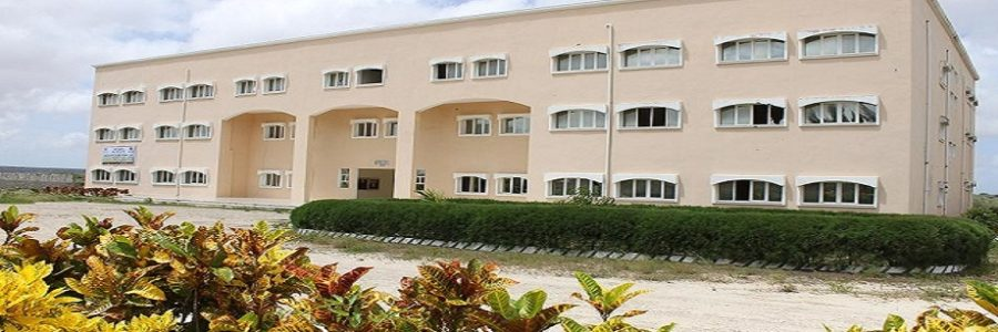 Mogadishu University and Open Learning Exchange Form Partnership